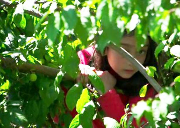 Nuestro video (2013)